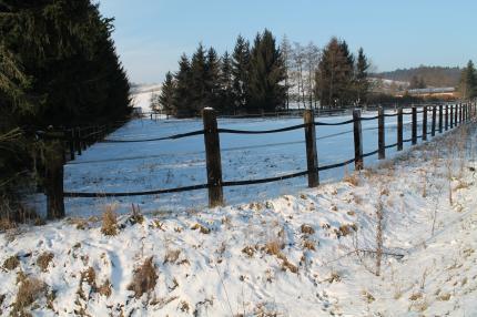 Winterlandschaft rund um die Reitanlage